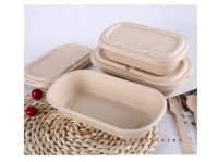 Degradable Straw Pulp Economical Environmentally Friendly Takeaway Meal Box