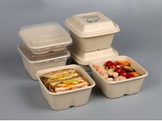 Environmentally-Friendly Square Box Degradable Pulp Take-away Box Eco-green 1000ml Square Friendly Salad Box